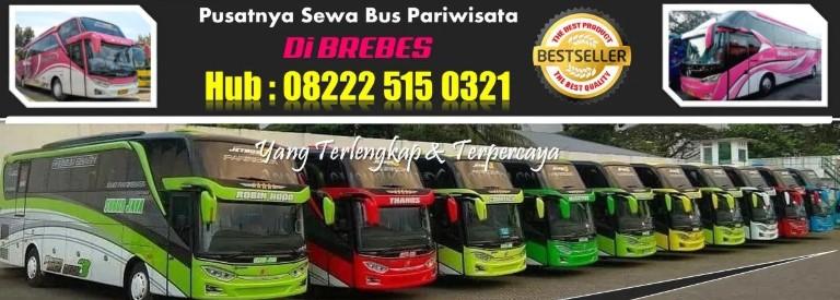 Harga Sewa Bus Pariwisata Brebes | 08222-515-0321